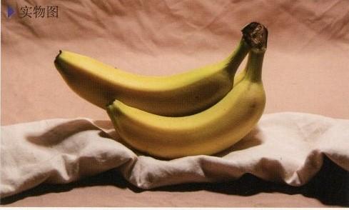 素描静物香蕉实体图与结构和步骤